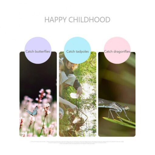 Children Retractable Summer Catch Toy Fishing Net Insect Butterfly Catcher Net 2