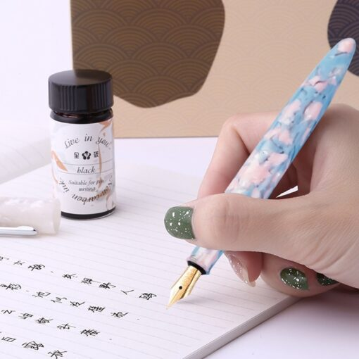 Journey Series Fountain Pen Set Art Gifts Adult Calligraphy Girls Exquisite Retro Fountain Pen Men s 2