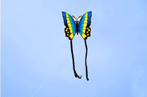 free shipping high quality butterfly kite with handle line children kite flying toys easy control ripstop 1